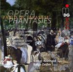 "CD ""Opern-Fantasien"" für Violine & Klavier"
